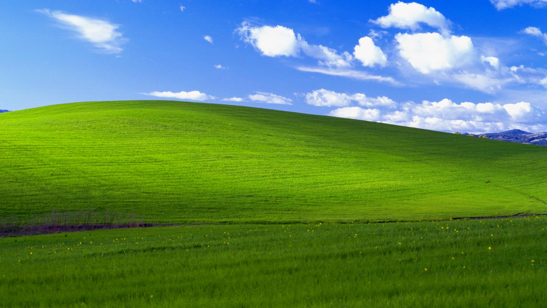 Windows XP wallpaper Bliss. Virtual background to use on Zoom, Microsoft Teams, Skype, Google Meet, WebEx or any other compatible app.