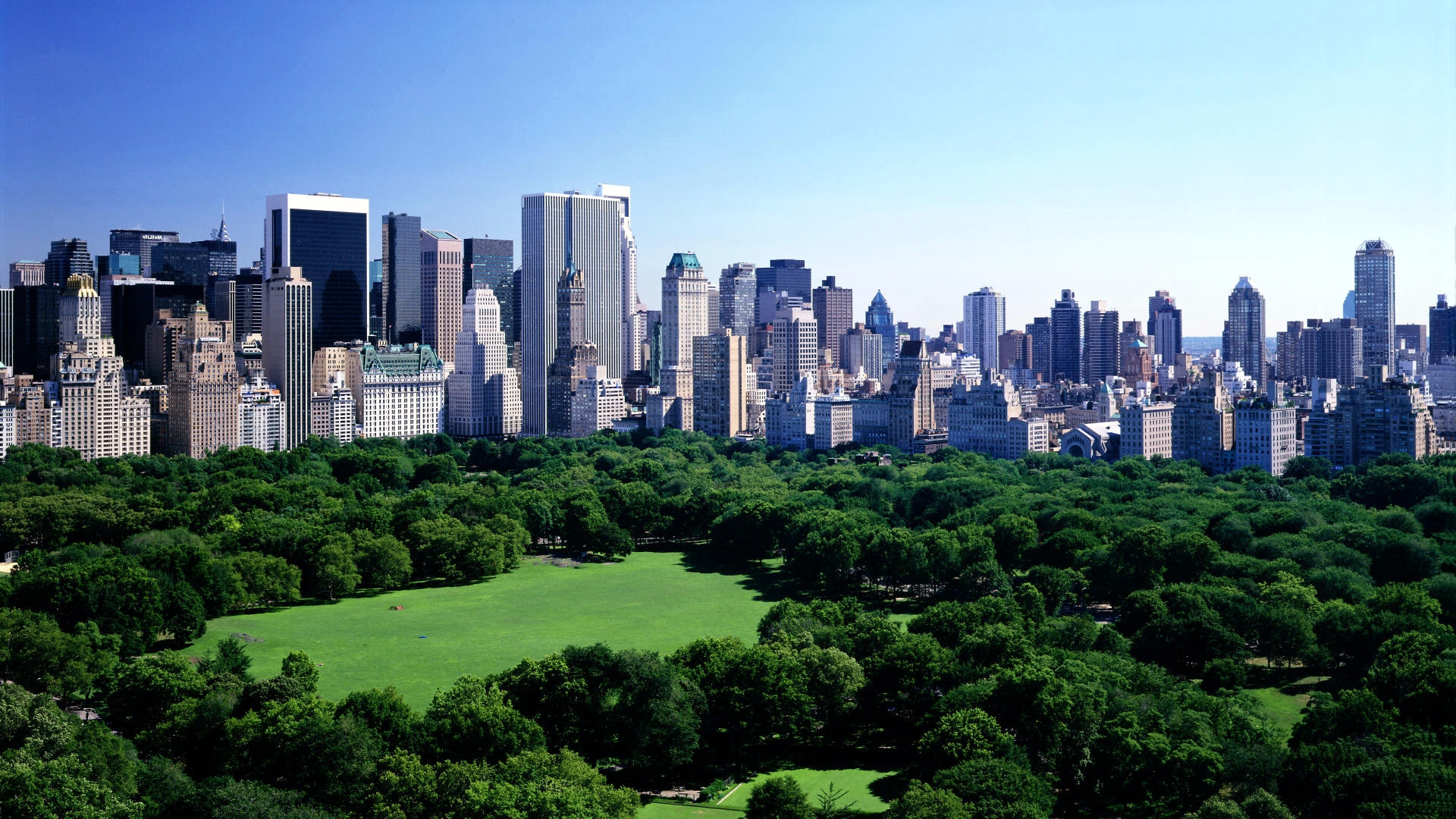 Central Park landscape. Virtual background to use on Zoom, Microsoft Teams, Skype, Google Meet, WebEx or any other compatible app.