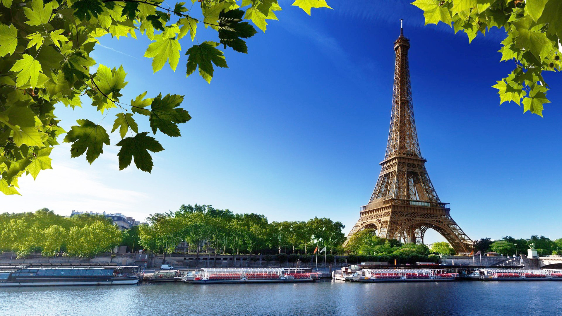 Eiffel Tower seen from the Seine river. Virtual background to use on Zoom, Microsoft Teams, Skype, Google Meet, WebEx or any other compatible app.