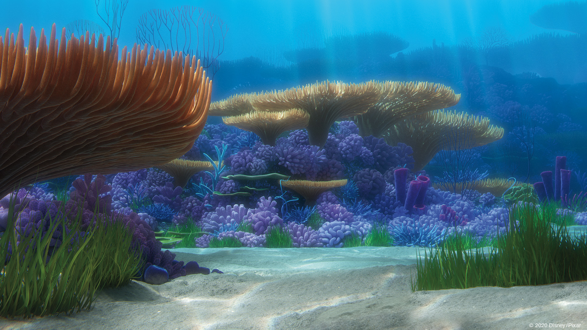 Finding Nemo coral reef. Virtual background to use on Zoom, Microsoft Teams, Skype, Google Meet, WebEx or any other compatible app.
